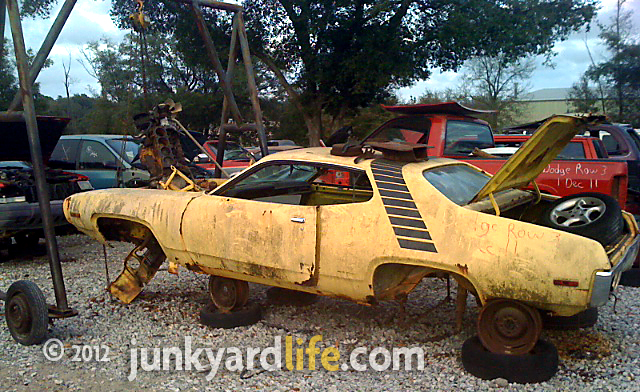 Junkyard Dog Yards For Sale