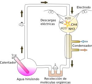 http://mmegias.webs.uvigo.es/5-celulas/1-origen_celula.php