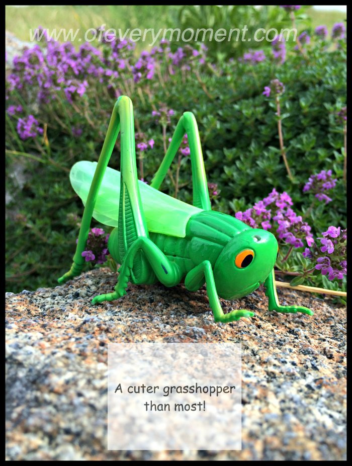 toy grasshopper, grasshopper