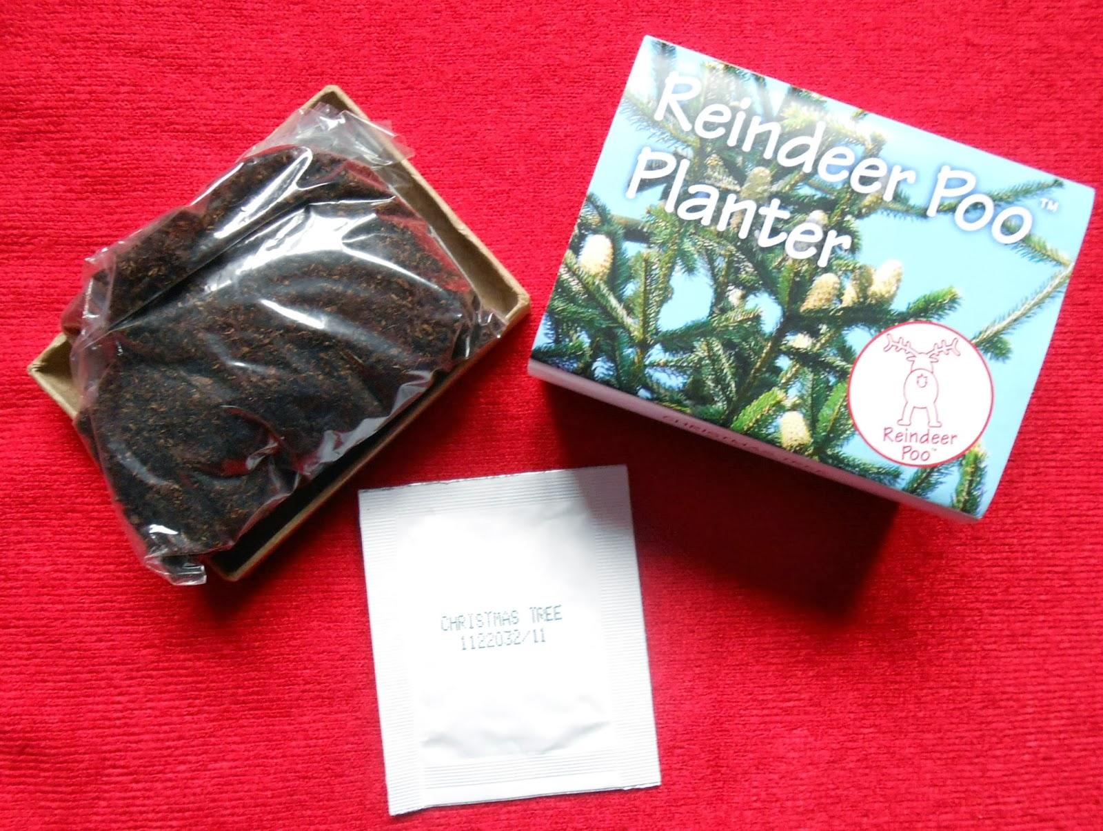 Reindeer Poo Planter