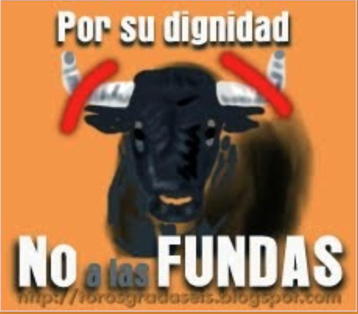 """EL TORO CON FUNDAS DEJA DE SER """"TORO"""""""