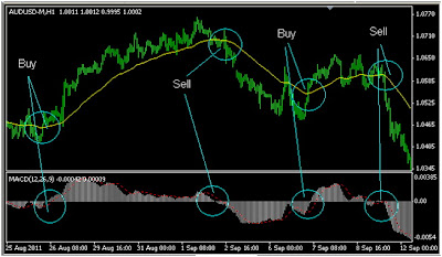 Mfm5 - Forex Trading Strategywidth=