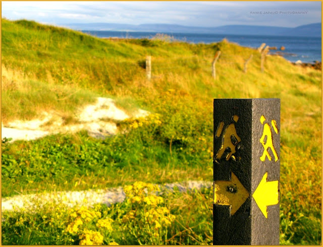 path, sand, road marker pointing to the beach