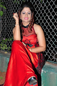 Shilpa Chakravarthy at Appudala Ippudila audio-thumbnail-4