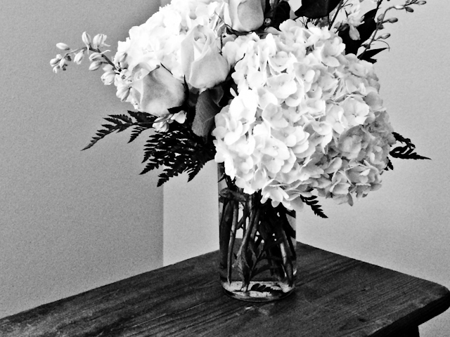 hydrangeas in black and white