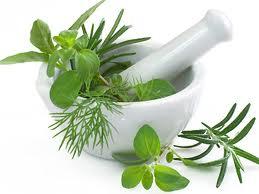 obat herbal, obat alami, obat tradisional, sehat alami, produk herbal