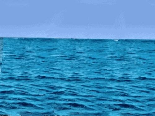 Denizde niçin tuz vardır?