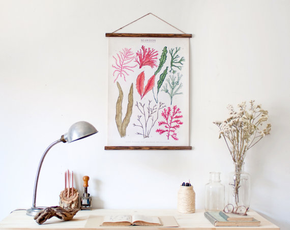 Seaweeds canvas poster by ARMINHO