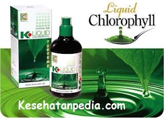 Bahaya Klorofil K Link & kandungannya