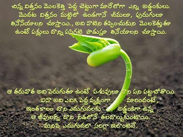 Telugu Useful Quotes