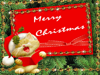 Cute kitten singing with wearing Santa hat in Merry Christmas red decorating ornaments background image