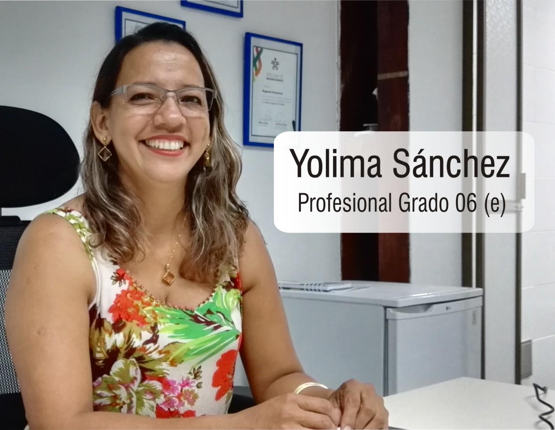 Profesional Grado 06 (e)