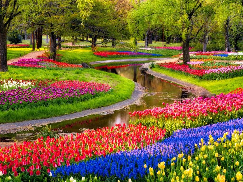 """<img src=""""http://1.bp.blogspot.com/-WF_q5Hb2_7Q/UtF2aa04cBI/AAAAAAAAHn0/XKLE2PgTQec/s1600/parks-garden.jpeg"""" alt=""""park wallpapers"""" />"""