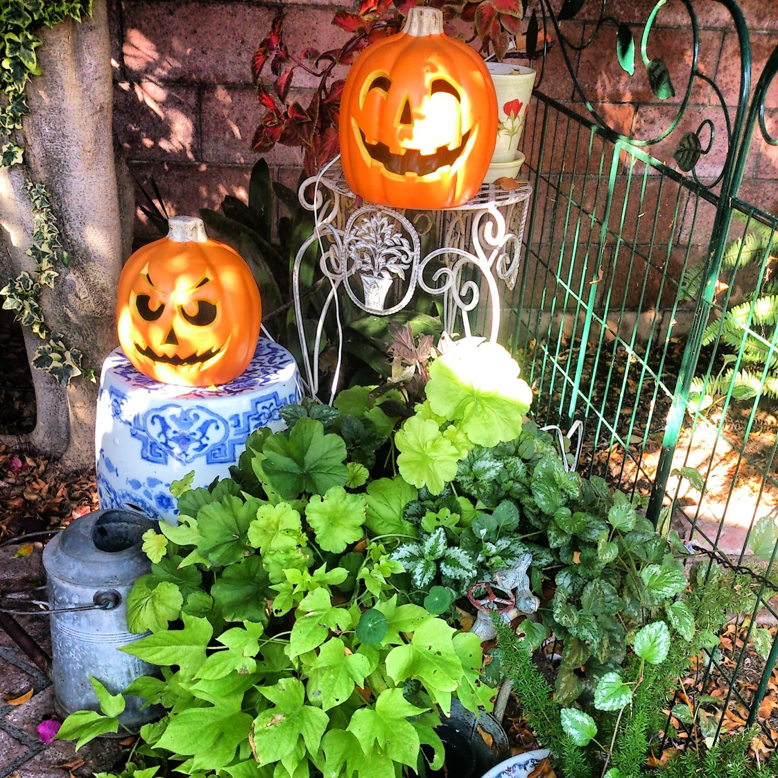 Sunny Simple Life: Pumpkins, Halloween Decor and the Garden