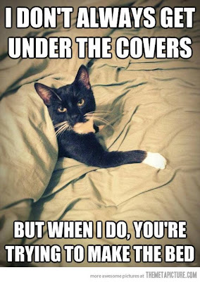 I don't always get under the covers, but when I do, you're trying to make the bed.