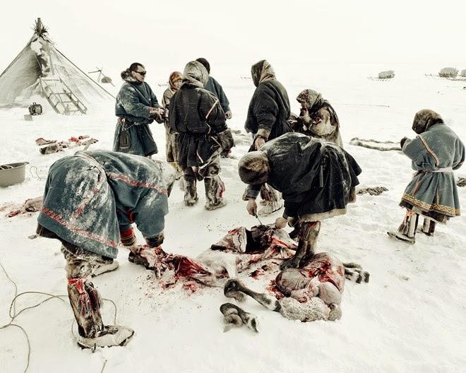 Bộ tộc ăn thịt sống ở Bắc Cực4