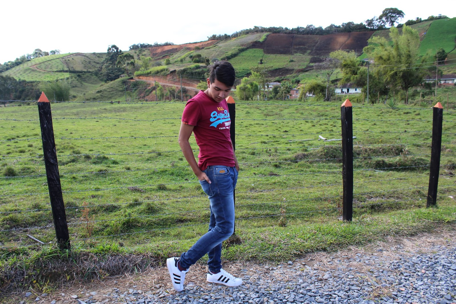 superdry colombia