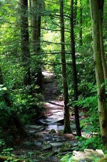 Delaware Water Gap National Recreation Area (Best Honeymoon Destinations In USA) 6