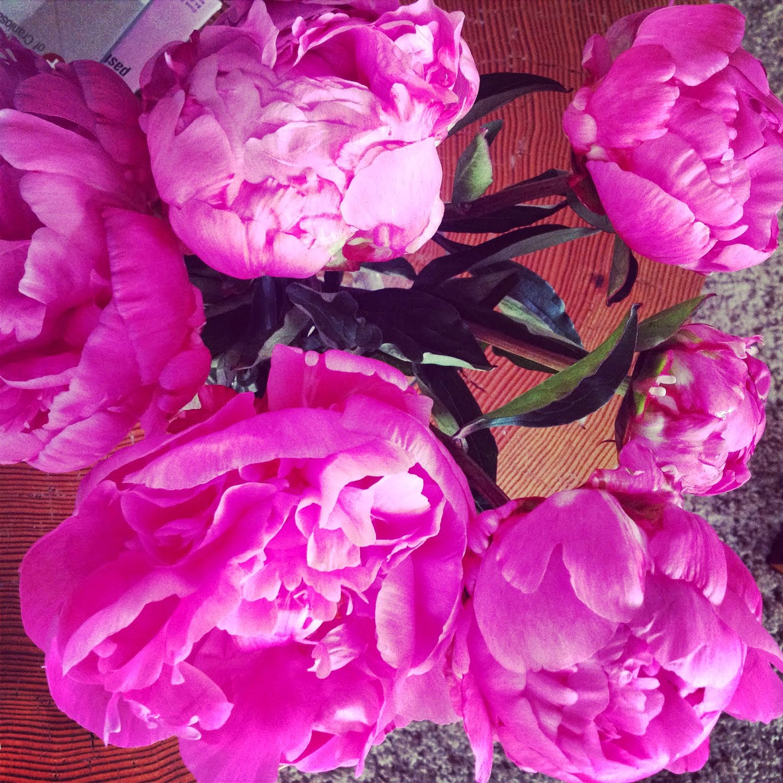 Favorites: peonies!