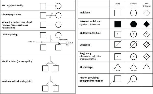 Variable Genome: Genetic pedigree symbols and legend