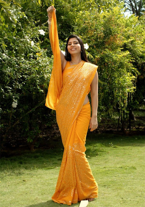 sarah sharma in saree tollywood spicy glamour  images