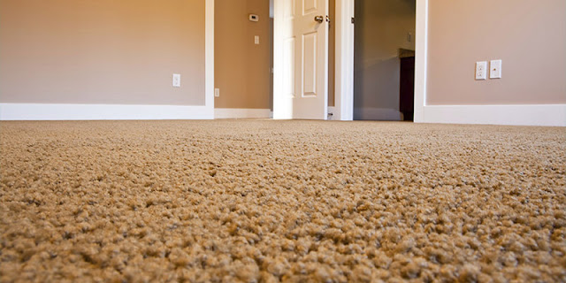 Versatile, stylish wall-to-wall carpet