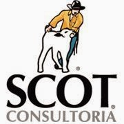 Parceiro - Scot Consultoria