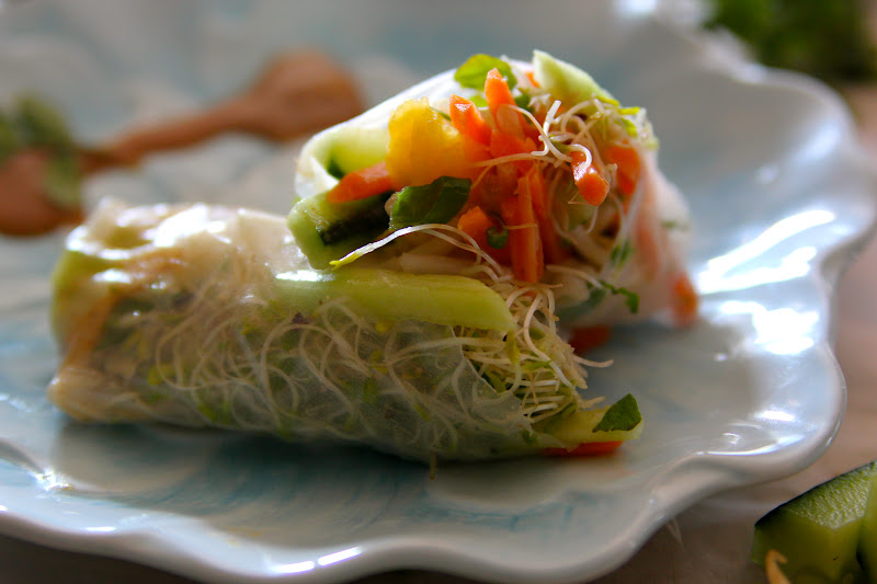 Vegetarian Spring Roll Recipe Vegetable spring rolls with an