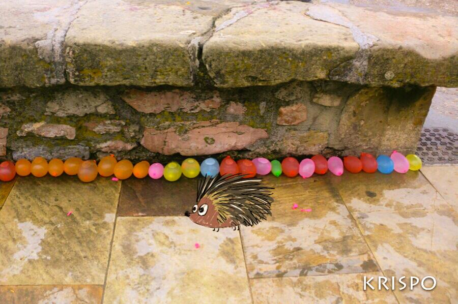 dibujo de erizo junto a globos llenos de agua