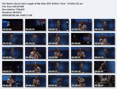 Kevin.Hart.Laugh.at.My.Pain.2011.DvDScr.Xvid-ViSUALiSE