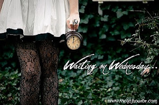 Waiting On Wednesday! (9)
