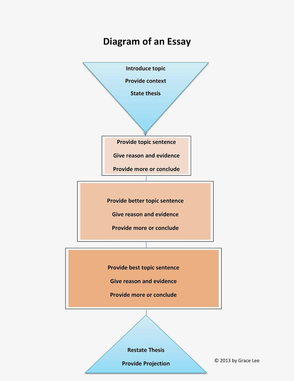 concept homeostasis essay