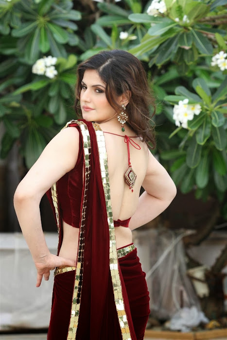 zarine khan glamorous in saree glamour  images