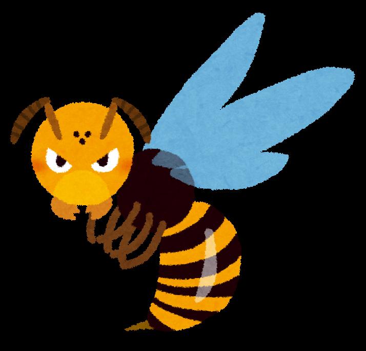 スズメバチの画像 p1_35