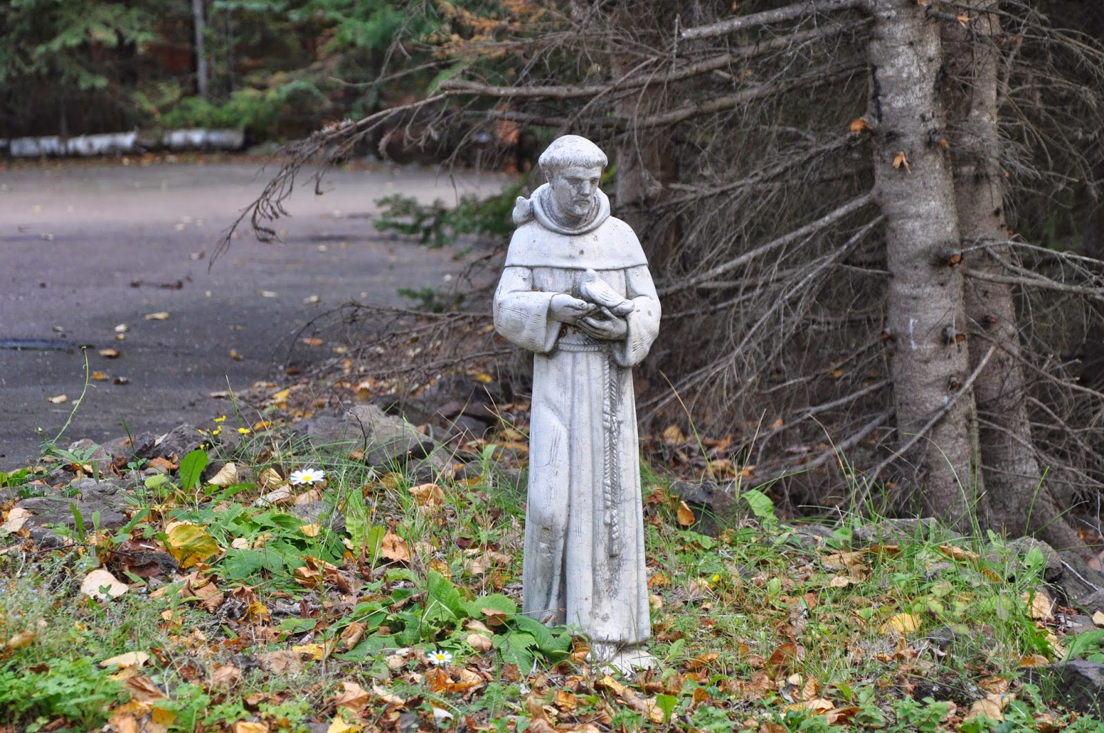 Ordinaire Garden Statue Of St. Francis