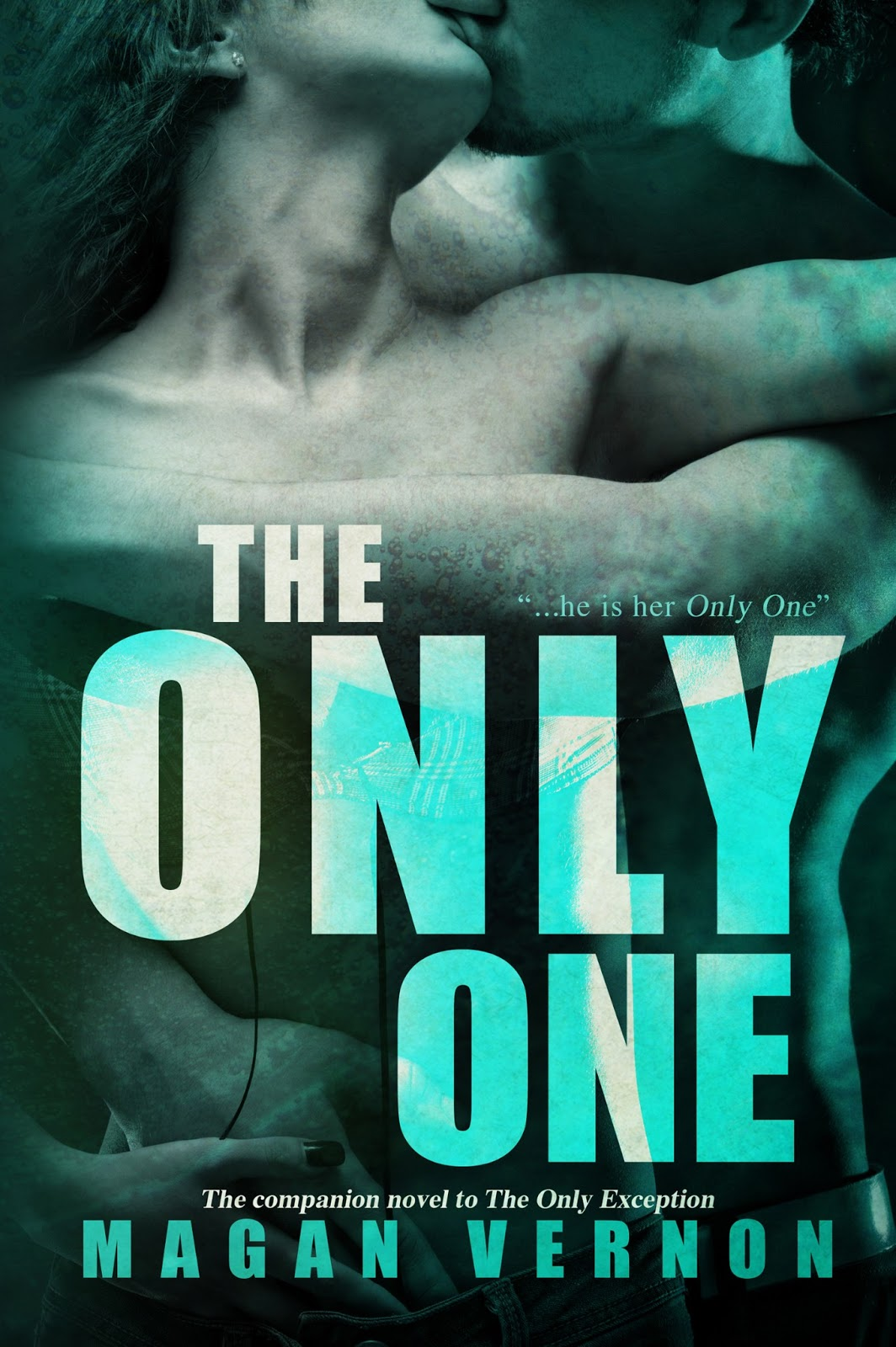 Whirlwindbooks july 2013 the only exception cover reveal fandeluxe Images