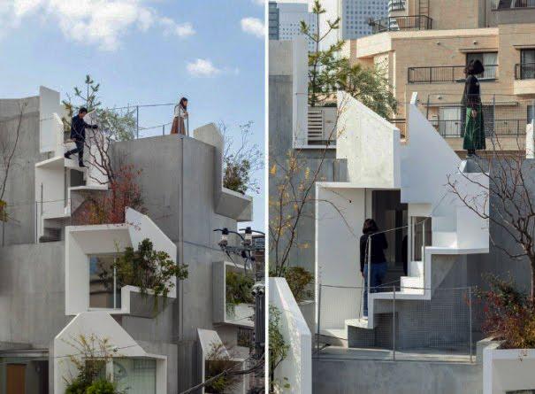 Акихиса Хирата построил концепцию жилого дома на основе структуры дерева