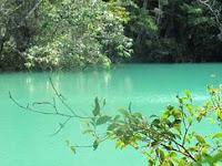 Taman Nasional Gunung Gede Pangrango Bogor
