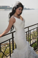 My Wedding Dress