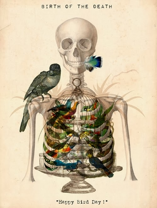 02-Anatomy-of-the-non-Living-Isabelle-Dalle-Illustrator-Artistic-Director-Marie-Claire-Group-www-designstack-co