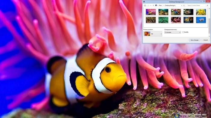سمكة المرجان لويندوز