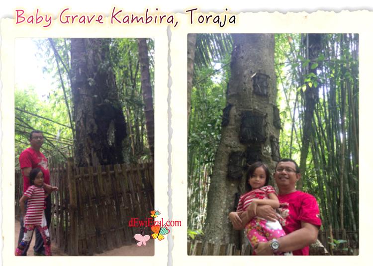 baby grave Toraja kuburan bayi toraja dimana bersama anak-anak