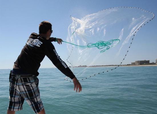Lưới đánh bắt cá nhỏ để làm mồi