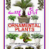 Ornamental Plants Urdu Book By Riaz Masud