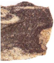 Batu gneis (Sumber: Eyewitness)