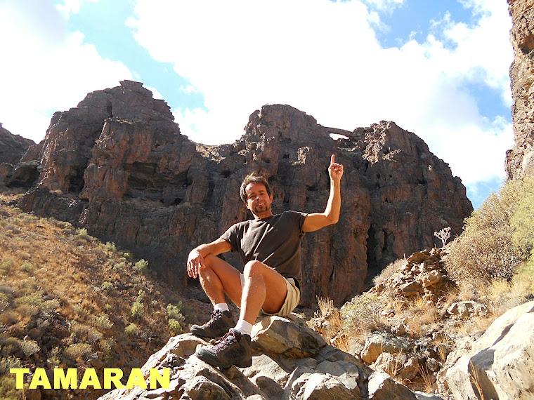 TAMARAN - ARCO DEL CORONADERO
