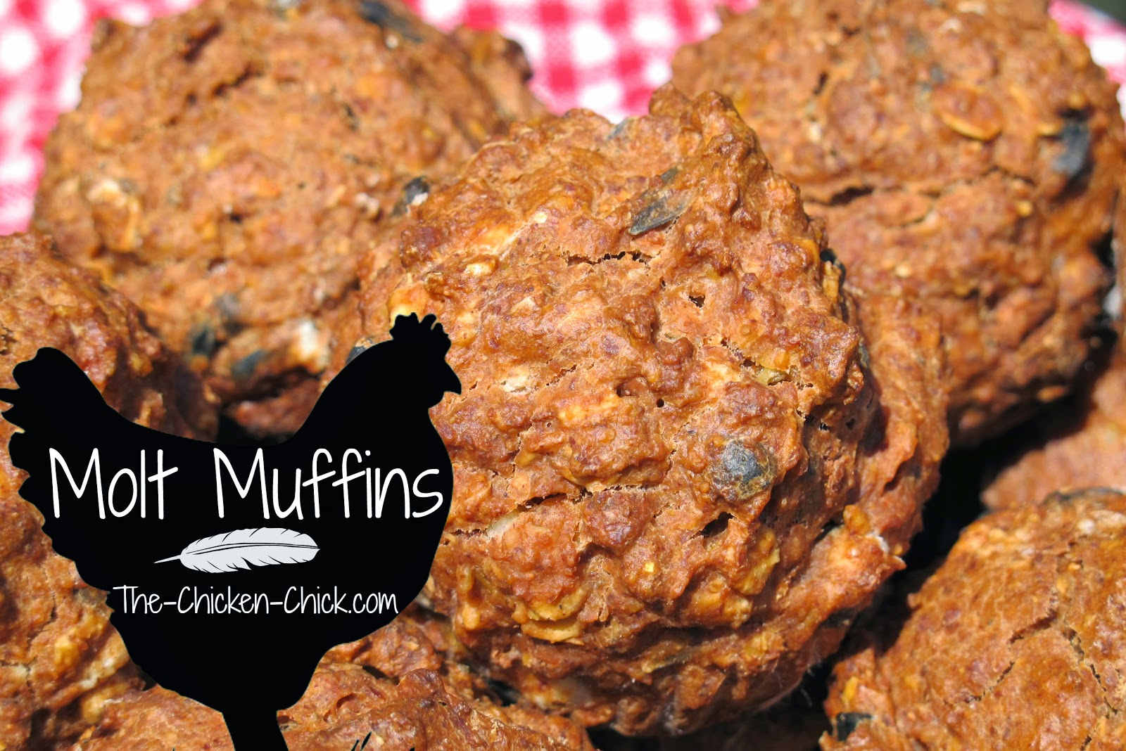 Molt Muffins