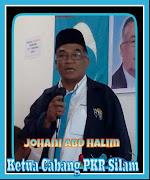 Ketua Cabang PKR Silam
