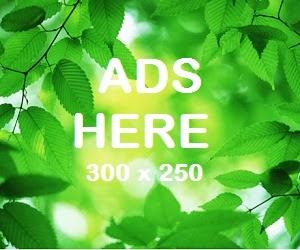 Ads 1
