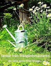 Här finns en lista över trädgårdsbloggar indelad efter växtzoner